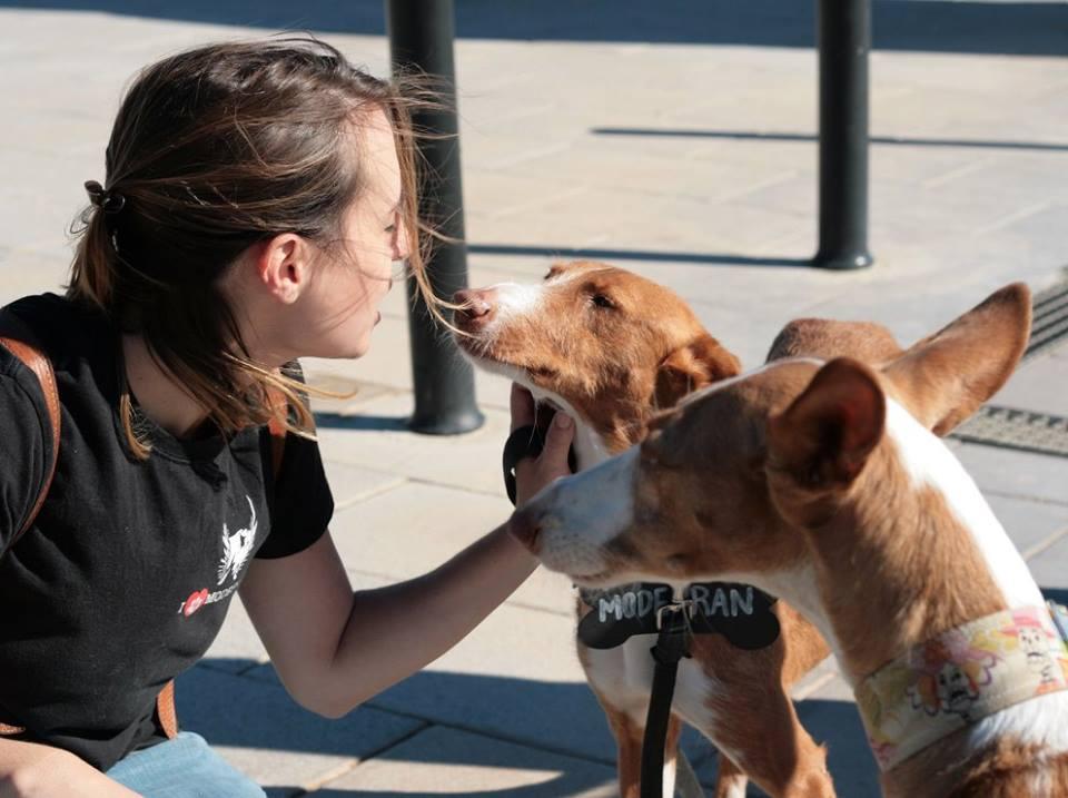 GALERÍA | Paterna se vuelca con la Fiesta de los Animales
