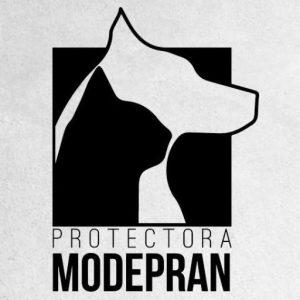 logo-modepran