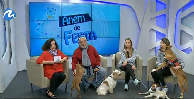 La Prote, protagonista en el programa 'Anem de Festa' de TV Mediterráneo